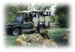 South Africa Day Tours