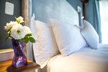 TshiBerry Bed & Breakfast - Room Decor