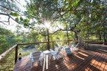 Bushbaby River Lodge - Deck overlooking riverbed