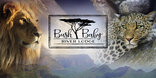 Bushbaby River Lodge - Logo