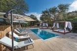 Bushbaby River Lodge - Pool