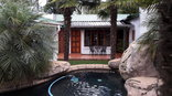 Sugarbird Guesthouse - The Pool