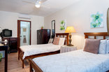 The Brother's Guest House - Oriole Room