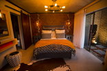 Wilderness Waters - Afro-Chic Suite