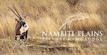 Nambiti Plains Private Game Lodge - Game Viewing