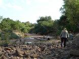 Pafuri Rivercamp