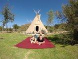 Lancewood TiPi Camp