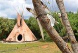 Lancewood TiPi Camp - Paws TiPi