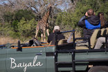 Bayala Private Safari Lodge and Camp - Game drives with giraffe