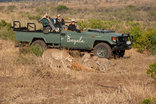 Bayala Private Safari Lodge and Camp - Game drives with cheetah kill