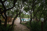 Eagles Nest Estate Guest House - Swimming Pool