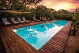 Royal Thonga Safari Lodge - Pool