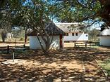 Balule (Satellite Camp) - Kruger Park