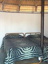 Balule (Satellite Camp) - Kruger Park