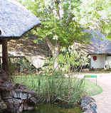 Shingwedzi Restcamp - Kruger Park