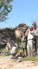 Kruger Park Guided Walks