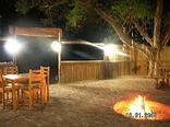 Olive Grove Guest Farm - Lombaardskraal Boma