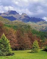 Bushmans Nek (Drakensberg)
