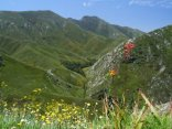 Garden Route and Klein Karoo Mountain Passes
