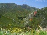 Garden Route and Klein Karoo Mountain Passes