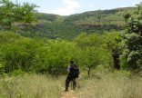 Shamrock Arms Guest Lodge - Hiking in the vicinity of Waterval Boven
