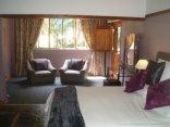 Eco Eden Bush Lodge - Plum Starling