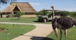 Mangwa Valley Game Lodge