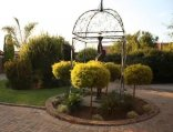 The Orion Guest House - Garden
