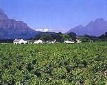 Franschhoek Wine Route