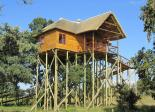 Pezulu Tree House Game Lodge - Mountain View Treehouse