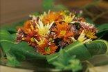 Primavera Guest House - Primavera, meaning