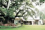 Hoëveld House