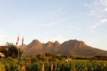 Eikendal Lodge - Our view of the Helderberg mountain.