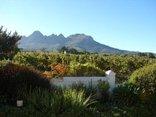 Eikendal Lodge - Lodge garden, vineyard and mountain views.