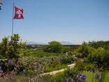 Eikendal Lodge - Lodge garden and vineyard views.