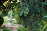 Die Fonteine Bed and Breakfast - Garden