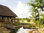 The Springbok Lodge - Pool