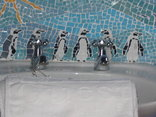 Bucaco Sud -  Bathroom tiles Penguin Room