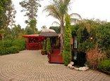 Constantia Vista Guest House - Studio