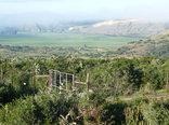 Kudu Ridge Game Ranch - View