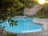 Storms River Guest Lodge - Swimming Pool
