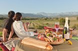Surval Boutique Olive Estate - Picnic at Surval Boutique Olive Estate