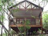 Hotel Phaphalati - Forest Chalet