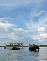 Chobe National Park - Chobe River