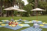 Sun City Cabanas - Conference Picnic