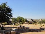 Twee Rivieren Restcamp - Kgalagadi Park