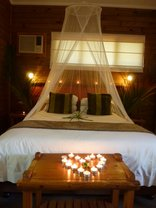 Bonamanzi Game Park - Honeymoon Tree House