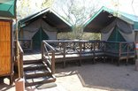 Mantuma Camp - Mkuze Game Reserve - 4-Bed Safari Tent