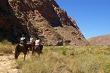 Mount Ceder Lodge - Horse-Riding