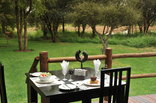 Black Rhino Game Lodge - Pilanesberg Game Reserve